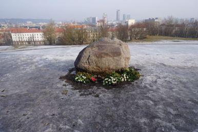 Uitzicht vanaf Tauro Kalnas | Litouwen | Vilnius