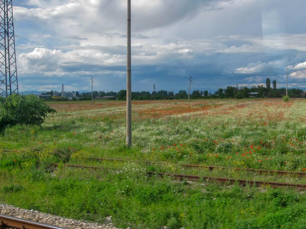 Trein van Sofia naar Plovdiv | 2014 | Bulgarije